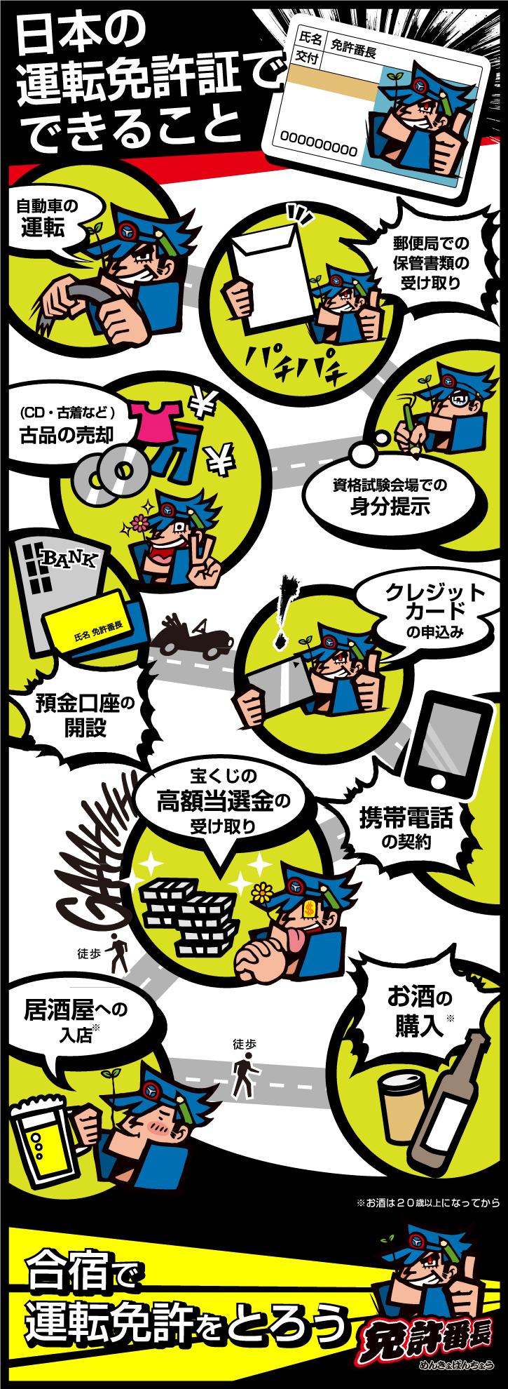 「日本の運転免許証でできること」のインフォグラフィックスなら免許番長